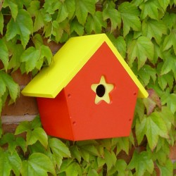 colourful_bird_boxes